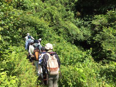 9月24日(日)エンジョイハイキング 延期のお知らせ